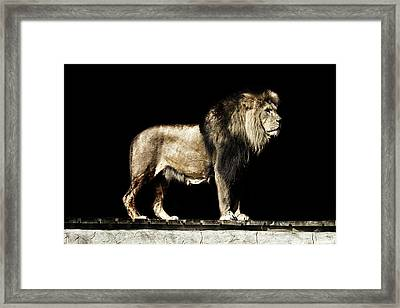 The Powerful Framed Print by Martin Newman