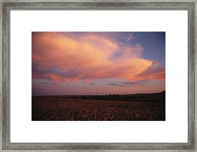 The Prairie Meets The Sky Framed Print by Joel Sartore