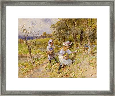 The Primrose Gatherers Framed Print by William Stephen Coleman