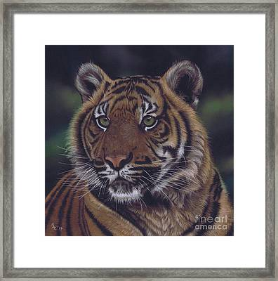 The Prince Of The Jungle Framed Print