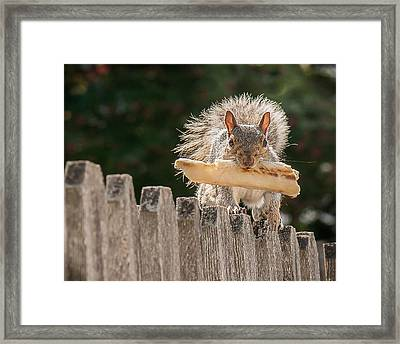 The Prize Framed Print by Len Romanick