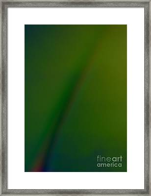 The Promise Framed Print by Erica Hanel