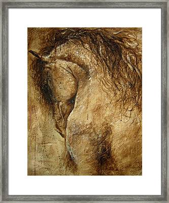 The Promise Of A Horse Framed Print by Paula Collewijn -  The Art of Horses