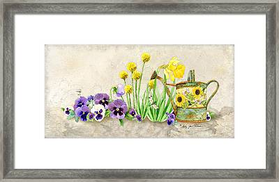 The Promise Of Spring - Pansy Framed Print by Audrey Jeanne Roberts