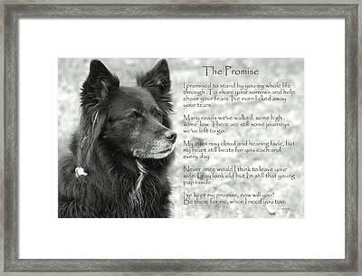 The Promise Framed Print