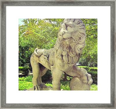The Proud Lion  Framed Print by JAMART Photography
