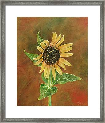 The Proven Light Framed Print by Carrie Jackson