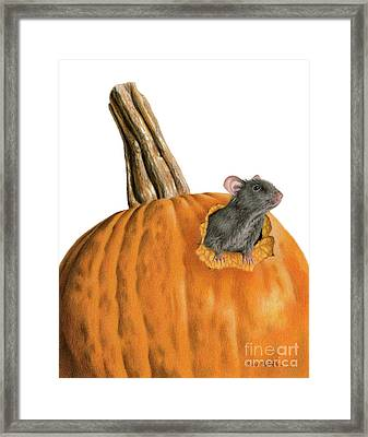 The Pumpkin Carver Framed Print by Sarah Batalka