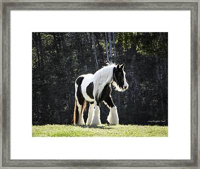 The Pumpkin Mare Framed Print