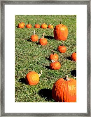The Pumpkin Patch II Framed Print