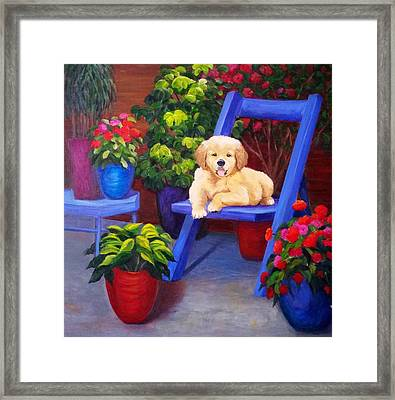 The Puppy In The Garden Framed Print