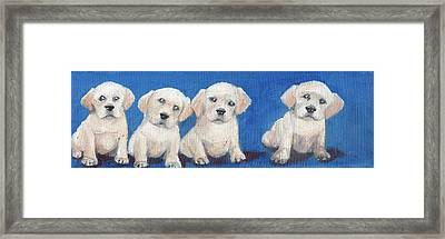 The Pups 1 Framed Print by Roger Wedegis