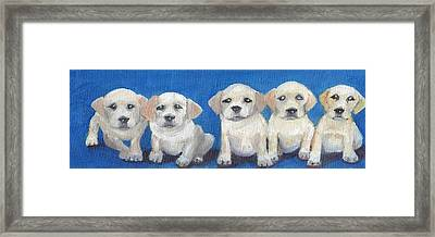 The Pups 2 Framed Print by Roger Wedegis