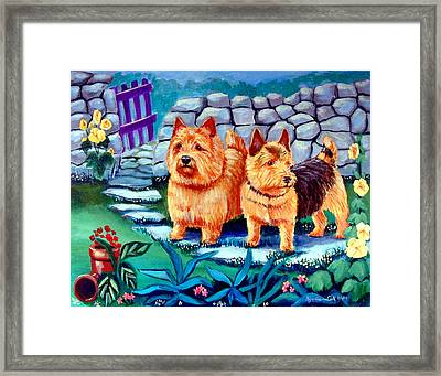 The Purple Gate - Norwich Terrier Framed Print by Lyn Cook