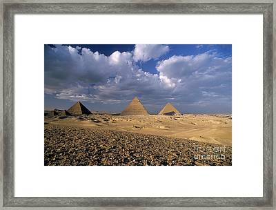 The Pyramids At Giza Framed Print by Sami Sarkis