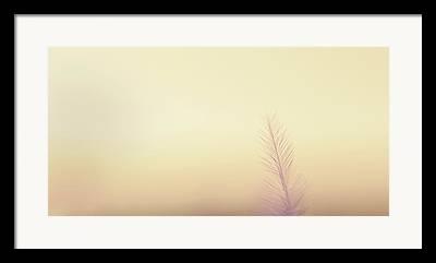 Breathing Framed Prints
