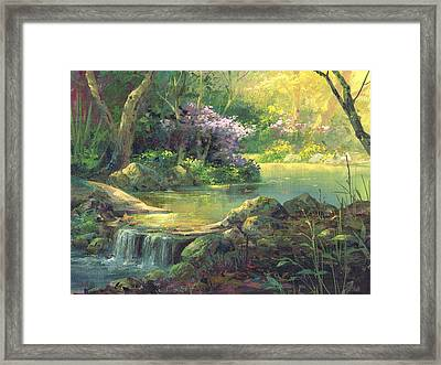 The Quiet Creek Framed Print by Michael Humphries