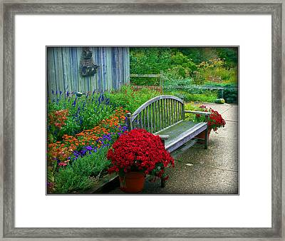 The Quiet Place Framed Print by Elizabeth Babler