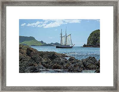 Framed Print featuring the photograph The R Tucker Thompson by Cheryl Strahl