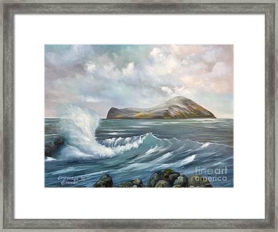 The Rabbit Island Framed Print