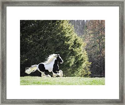 The Race Framed Print by Terry Kirkland Cook