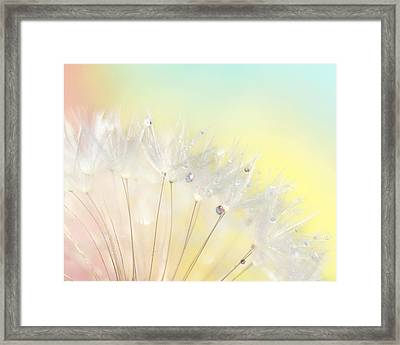 The Rainbow Connection Framed Print by Amy Tyler
