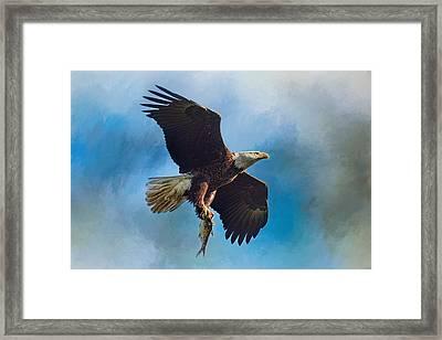 The Raptor's Catch Framed Print