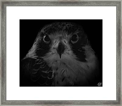 The Raptors, No. 10 Framed Print