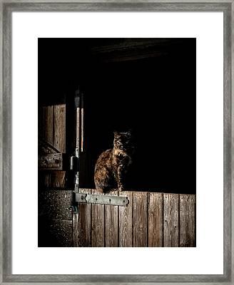 The Rat Catcher Framed Print by Paul Neville