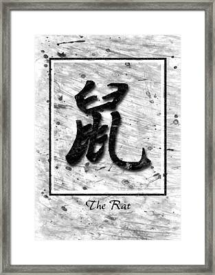 The Rat Framed Print by Mauro Celotti
