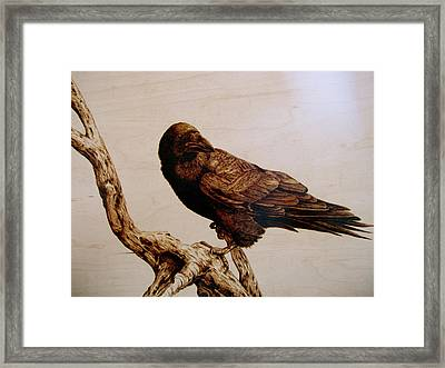 Framed Print featuring the drawing The Raven by Adam Owen