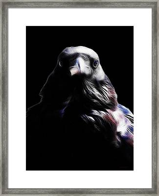 The Raven In My Dreams Framed Print by Wingsdomain Art and Photography