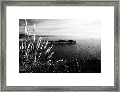 The Reach Framed Print by Wayne Stadler