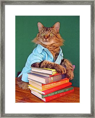 The Reader Framed Print by Joann Biondi