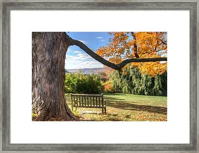 The Reading Bench Framed Print by Zev Steinhardt