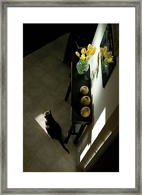 The Reception Hall Framed Print
