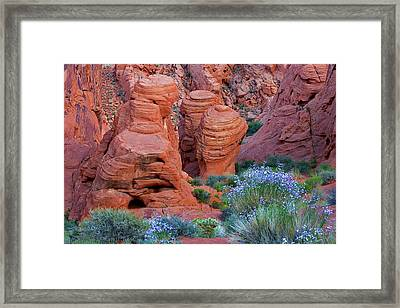 The Red And The Blue Framed Print