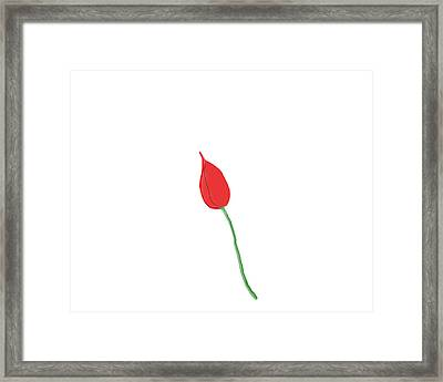 The Red Bud Framed Print