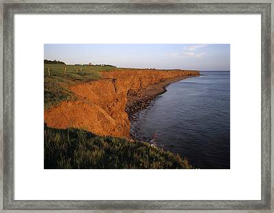 The Red Cliffs Of Prince Edward Island Framed Print by Taylor S. Kennedy