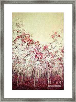 The Red Forest Framed Print by Priska Wettstein