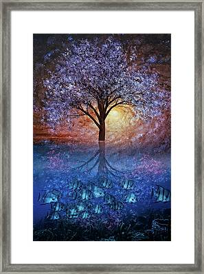 The Reef At Night Framed Print