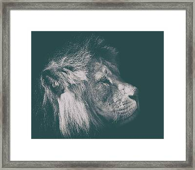 The Regal Look Framed Print