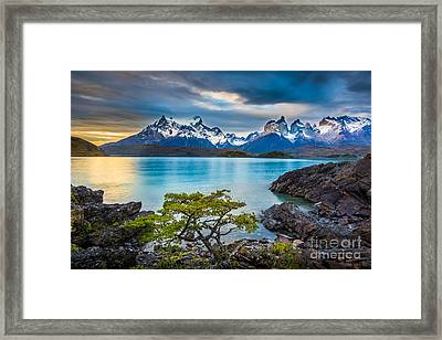 The Remains Of The Day Framed Print by Inge Johnsson