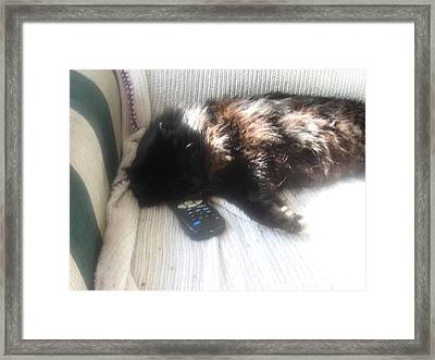 The Remote Is Occupied Framed Print