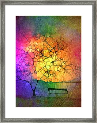 The Resting Place For Lost Dreams Framed Print