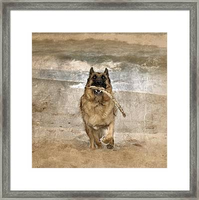 The Retrieve Framed Print