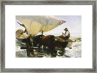 The Return From Fishing Framed Print by Joaquin Sorolla