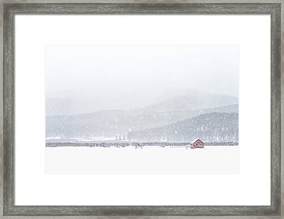 The Rise Of Winter Framed Print by Evelina Kremsdorf