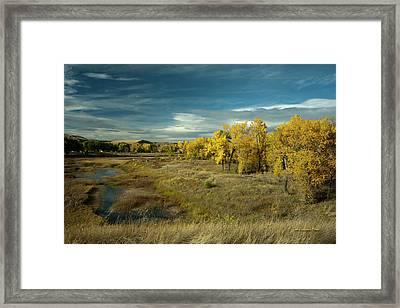 The River Bottom Framed Print by Tom Buchanan