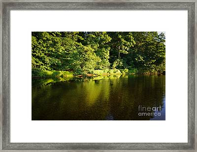 The River Swale Framed Print by Nichola Denny